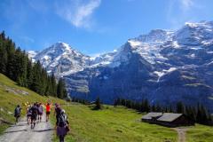 Jungfrau-Marathon_2015-18