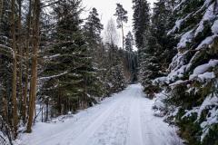 Wintermarathon-Coburg-18