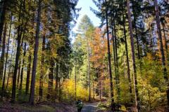 2017_Trails4Germany-4