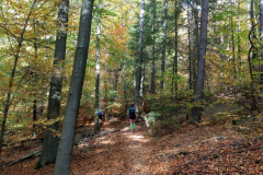 2018_Trails4Germany-2